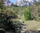 plezanje-krk-belove-stene-pot-navzgor